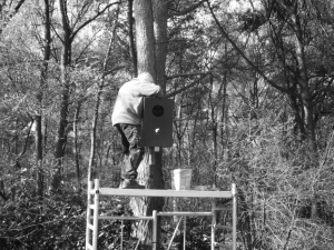 ophangen bosuilenkast ZW