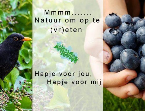 MMMM… Natuur om op te (vr) eten …………Pruimen!